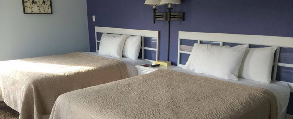 Enjoy Our Comfortable Beds At The End Of The Day