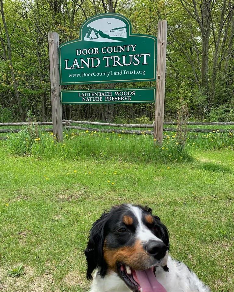 Dog Friendly Door County