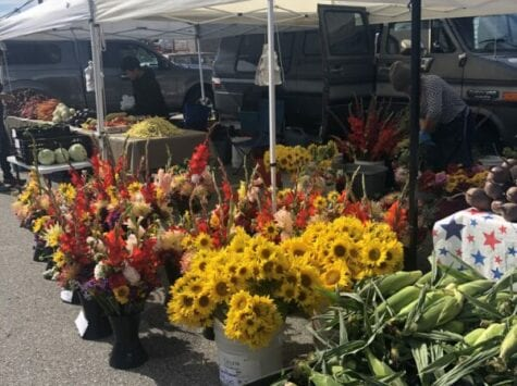Farmers Markets in Door County